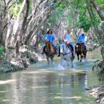 Benbrook Stables Trail Ride